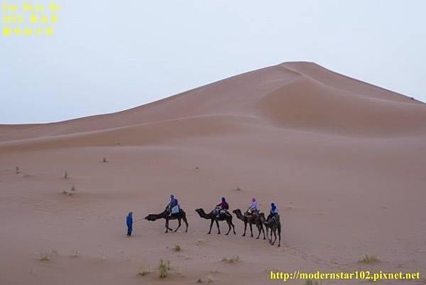 1050409撒哈拉沙漠894A7334-1-1 (640x427).jpg