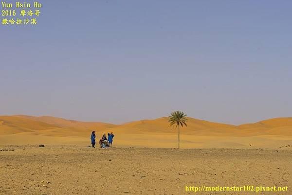 1050409撒哈拉沙漠DSC00484-1 (640x427).jpg
