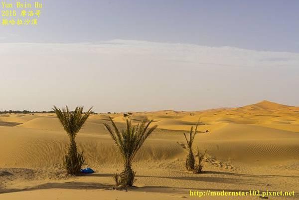 1050409撒哈拉沙漠DSC00497-1 (640x427).jpg