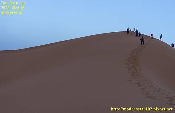1050409撒哈拉沙漠DSC00544-1-1 (640x414).jpg
