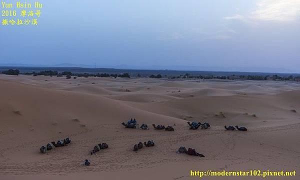 1050409撒哈拉沙漠DSC00541-1 (640x384).jpg