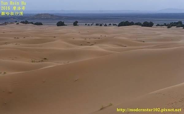 1050409撒哈拉沙漠DSC00549-1 (640x396).jpg
