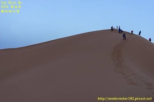 1050409撒哈拉沙漠DSC00544-1 (640x427).jpg