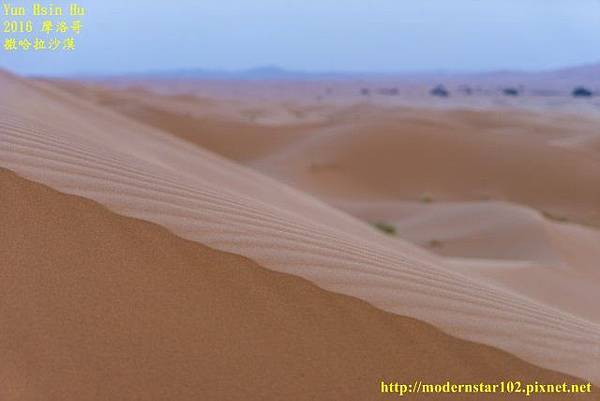 1050409撒哈拉沙漠DSC00545-1 (640x427).jpg