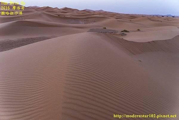 1050409撒哈拉沙漠DSC00558-1 (640x427).jpg