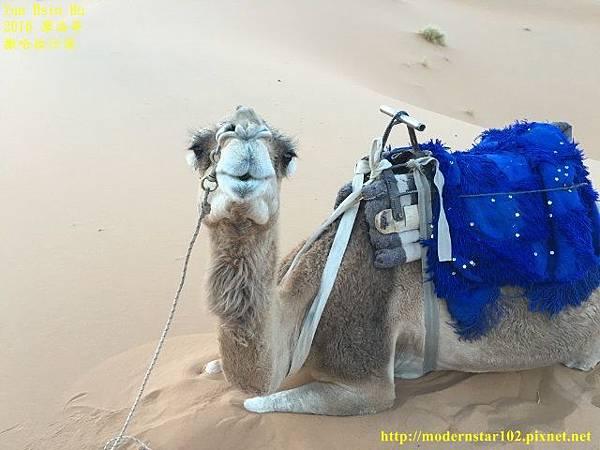 1050409撒哈拉沙漠IMG_0122 (640x480).jpg