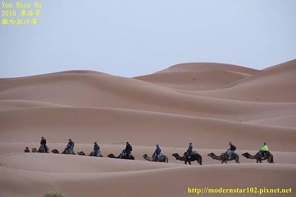 1050409撒哈拉沙漠894A7414 (640x427).jpg