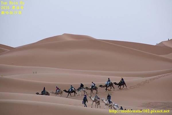 1050409撒哈拉沙漠894A7421 (640x427).jpg