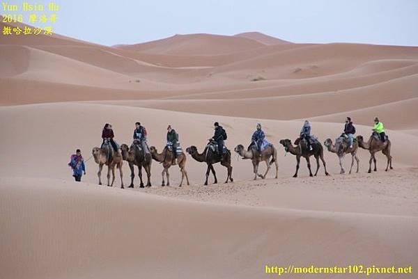 1050409撒哈拉沙漠894A7416 (640x427).jpg