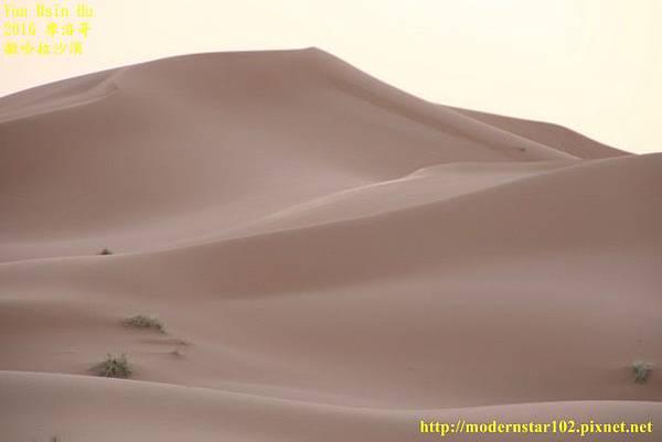1050409撒哈拉沙漠894A7423 (640x427).jpg