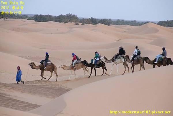 1050409撒哈拉沙漠894A7425 (640x427).jpg