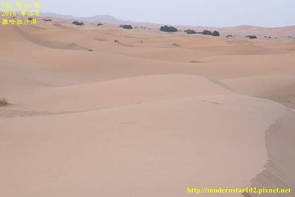 1050409撒哈拉沙漠894A7429 (640x427).jpg