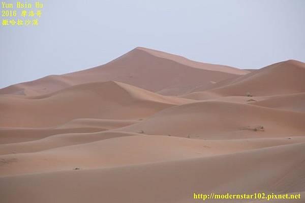 1050409撒哈拉沙漠894A7427 (640x427).jpg
