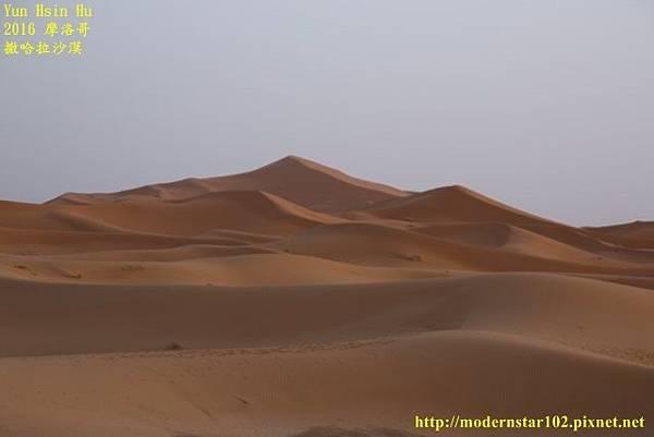 1050409撒哈拉沙漠894A7486 (640x427).jpg