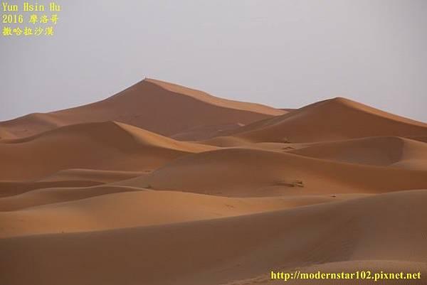 1050409撒哈拉沙漠894A7504 (640x427).jpg