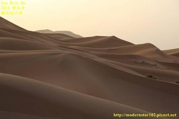 1050409撒哈拉沙漠894A7508 (640x427).jpg