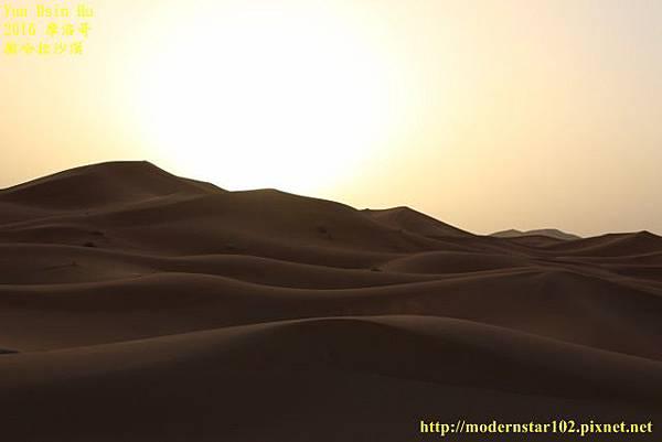 1050409撒哈拉沙漠894A7495 (640x427).jpg