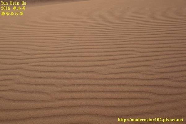 1050409撒哈拉沙漠894A7492 (640x427).jpg