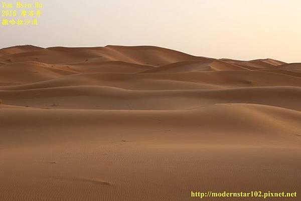 1050409撒哈拉沙漠894A7511 (640x427).jpg
