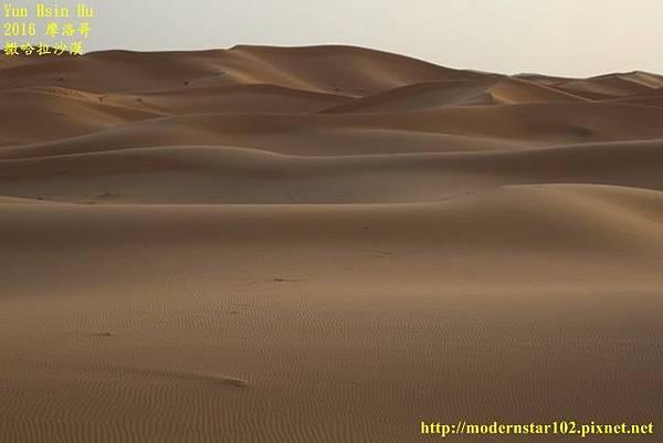 1050409撒哈拉沙漠894A7519 (640x427).jpg