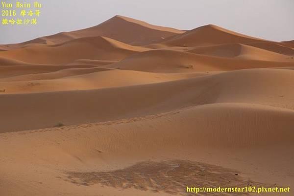 1050409撒哈拉沙漠894A7512 (640x427).jpg
