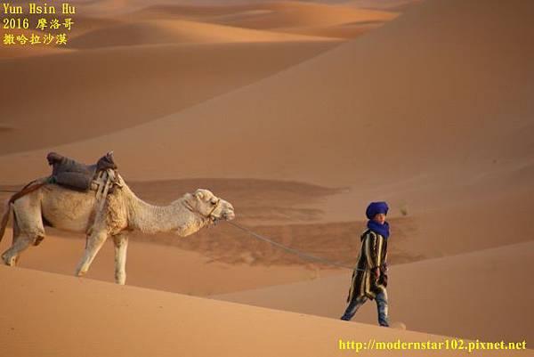1050409撒哈拉沙漠894A7536 (640x427).jpg