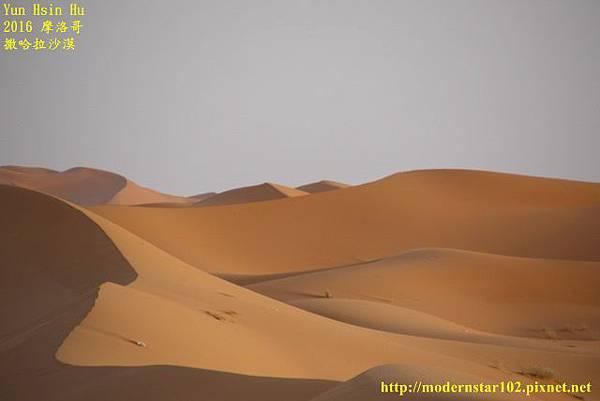 1050409撒哈拉沙漠894A7545 (640x427).jpg
