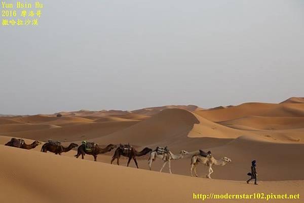 1050409撒哈拉沙漠894A7538 (640x427).jpg