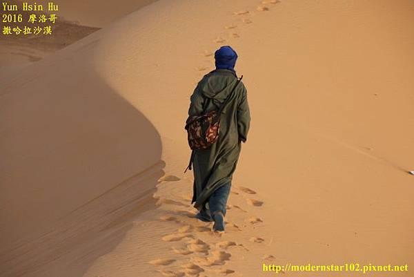 1050409撒哈拉沙漠894A7555 (640x427).jpg