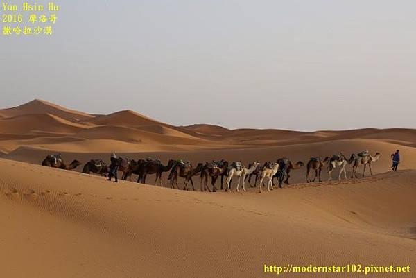1050409撒哈拉沙漠894A7562 (640x427).jpg