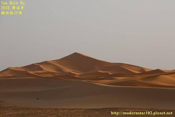 1050409撒哈拉沙漠894A7598 (640x427).jpg
