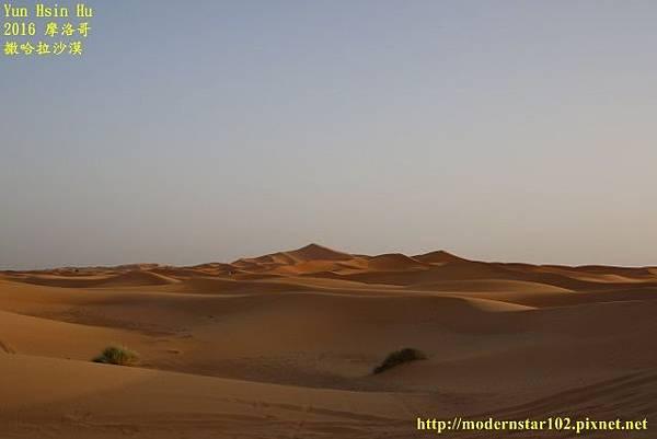 1050409撒哈拉沙漠894A7571 (640x427).jpg