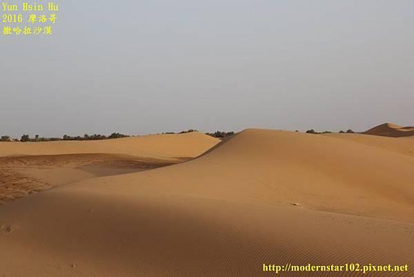 1050409撒哈拉沙漠894A7582 (640x427).jpg