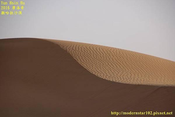1050409撒哈拉沙漠894A7591 (640x427).jpg