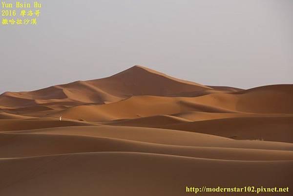 1050409撒哈拉沙漠894A7579 (640x427).jpg