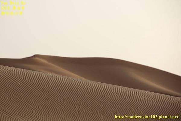 1050409撒哈拉沙漠894A7592 (640x427).jpg