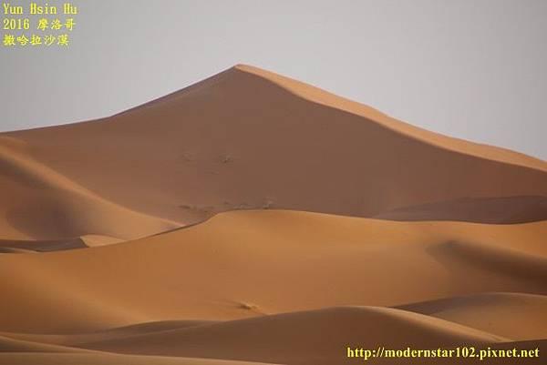 1050409撒哈拉沙漠894A7577 (640x427).jpg