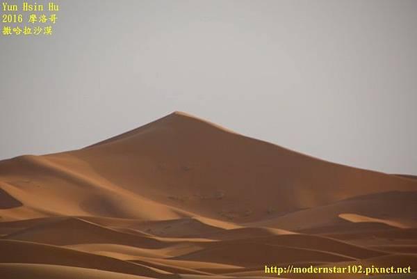 1050409撒哈拉沙漠894A7608 (640x427).jpg