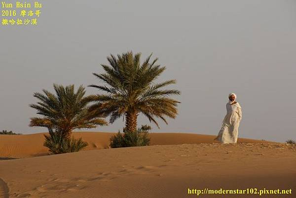 1050409撒哈拉沙漠894A7612 (640x427).jpg