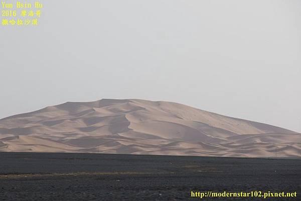 1050409撒哈拉沙漠894A7633 (640x427).jpg