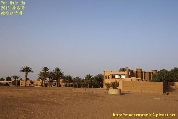 1050409撒哈拉沙漠894A7631 (640x427).jpg