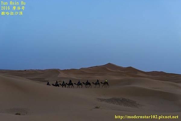 1050409撒哈拉沙漠DSC00565-1 (640x427).jpg
