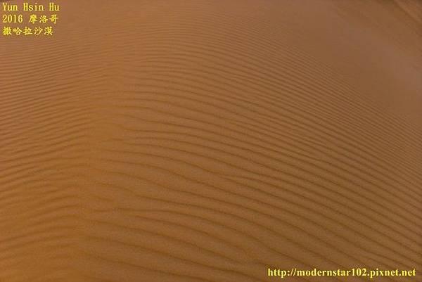 1050409撒哈拉沙漠DSC00563-1 (640x427).jpg