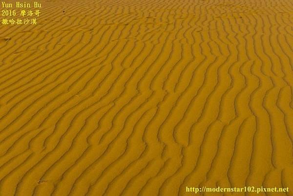 1050409撒哈拉沙漠DSC00586-1 (640x427).jpg