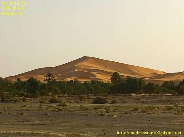 1050409撒哈拉沙漠IMG_0186-1 (640x475).jpg
