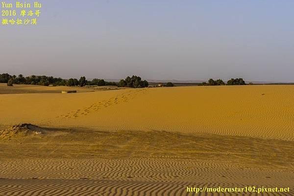 1050409撒哈拉沙漠DSC00594-1 (640x427).jpg