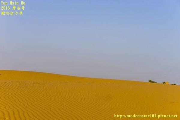 1050409撒哈拉沙漠DSC00590-1 (640x427).jpg