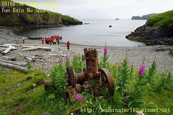 20160730Unga islandDSC01808 (640x427).jpg