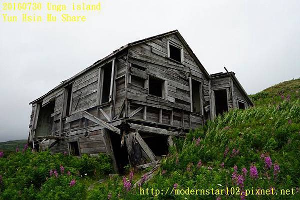 20160730Unga islandDSC01948 (640x427).jpg