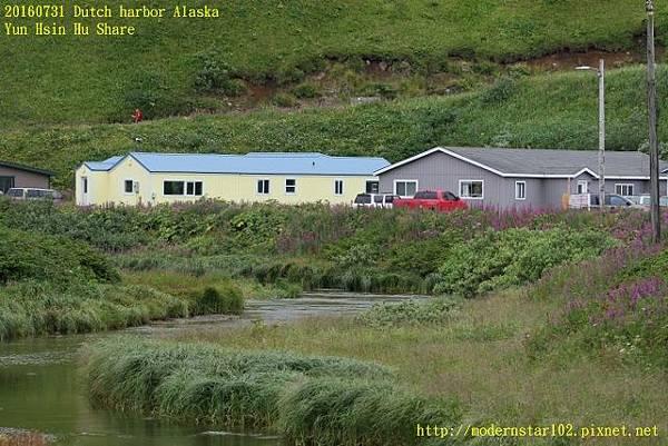 20160731Dutch harbor Alaska894A3866 (640x427).jpg